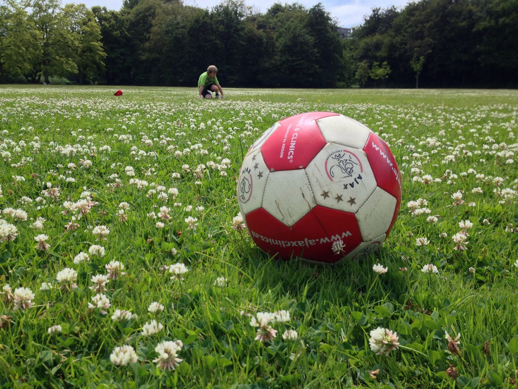 Voetballen met de jarige job omringd door de geur van bloemen