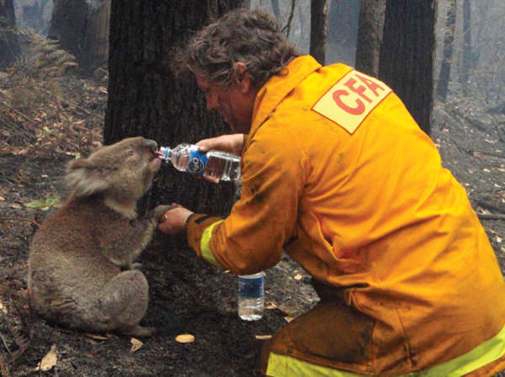 australie_branden