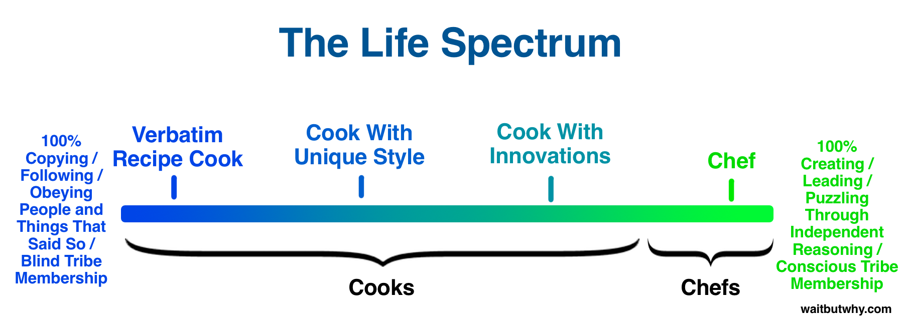 Chef-Cook-Life-Spectrum3